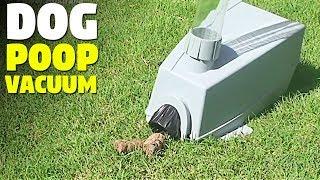 Best Dog Poop Vacuum