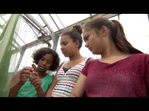 """""""SciGirls"""" TV series encourages girls to succeed in STEM - Science Nation"""
