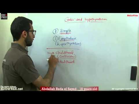 Goiter and hypothyroidism - Chapter 6 - Biology - edu4free