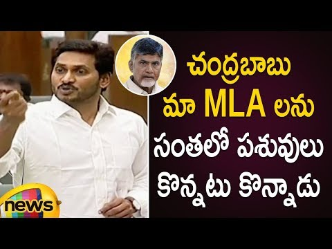 AP CM YS Jagan Fires On Chandrababu Naidu Over Buying Of YCP MLA's | AP Assembly Session 2019