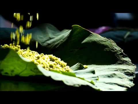 Trance Mix - Dance Of Sunlight - DJ Big Head Ha Noi Viet Nam