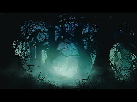 Celtic Instrumental Music Darkwood Forest Youtube