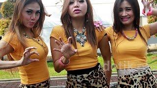 Download Sakit Hati  - Trio Macan  karaoke dangdut ( tanpa vokal ) cover #adisTM