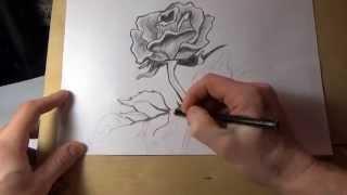 Как нарисовать розу карандашом поэтапно. Красивая роза(, 2015-04-14T23:24:07.000Z)