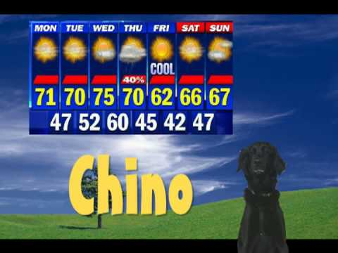 Chino does the weather