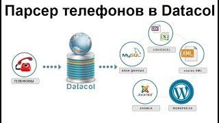Парсер телефонов на Datacol. Тестируйте бесплатно!