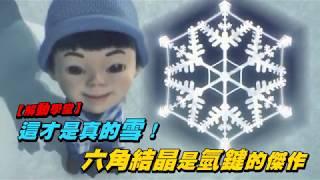 【解動學堂】這才是真的雪! 六角結晶是氫鍵的傑作  | 動知識 | 台灣蘋果日報