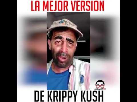 La mejor version de KRIPPY KUSH