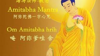 阿弥陀佛一字心咒30分钟    海涛法师 教念 Amitabha Mantra by Master Haitao