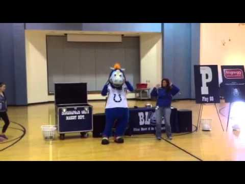 """Colts Mascot """"Blue"""" at North Vermillion Elementary"""