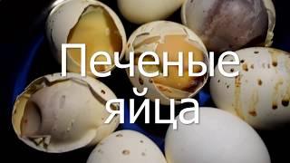 Печеные яйца в скорлупе