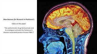 Prevention of Parkinson's Disease Through the Use of Niclosamide