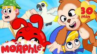 Morphle's Monkey Madness - Jungle Train | Mila and Morphle | Cartoons for Kids | @Morphle TV