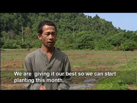 Aceh Farmers: Back on the Land