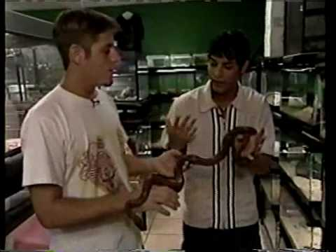Anthony Galindo - El Papijoe - Control - Snake