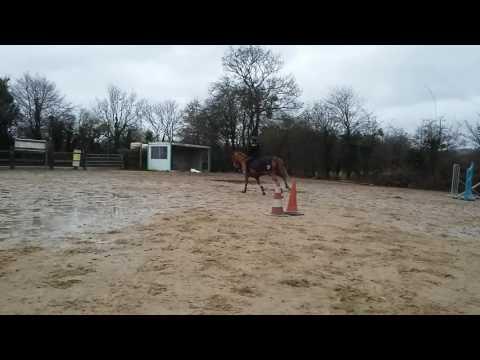 Amandine et Opaline de Lolif enchaînement bricquebec prépa salon du cheval club 1