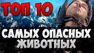 топ 10 самых опасных животных мира
