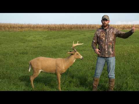 Using Deer Decoys | Cabela's Whitetail Season