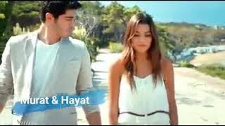 Murat and Hayat loving song