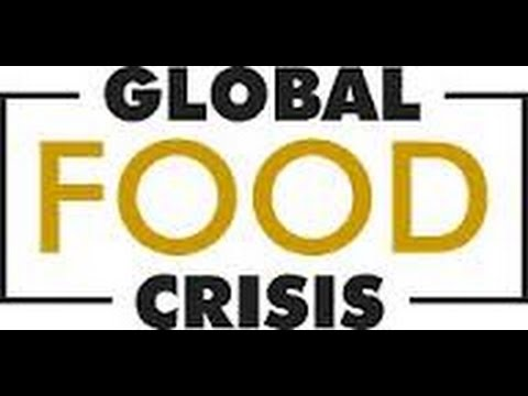 GLOBAL FOOD CRİSİS Special Report  World Food Crisis