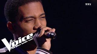 Céline Dion - Starmania - Ziggy | Shaun | The Voice 2019 | Blind Audition