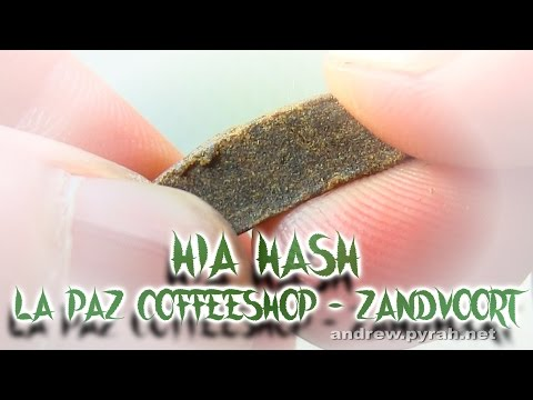 HIA HASH JOINT AT THE BEACH La Paz Coffeeshop Zandvoort - Amsterdam Weed Review 2015