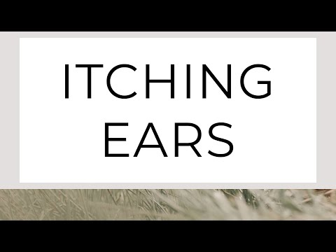 sermon image for Itching Ears