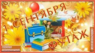 День знаний | Поздравление с 1 Сентября | Поздравление с Днём Знаний | Футаж |