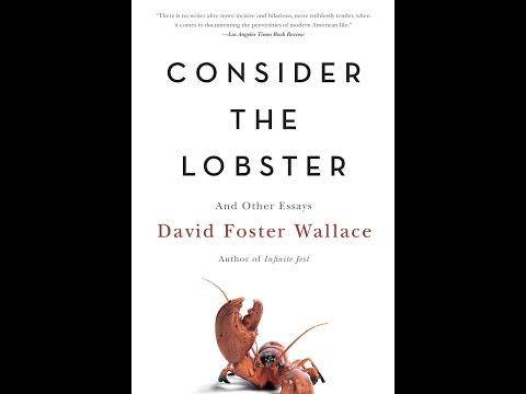 David Foster Wallace - How Tracy Austin Broke My Heart