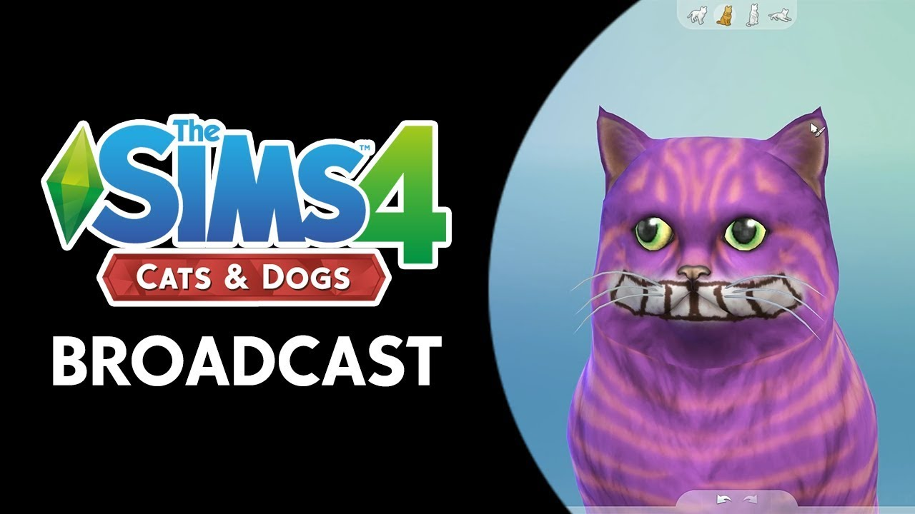 The Sims 4 Cats & Dogs: Create-a-Pet Broadcast (October 12th, 2017)
