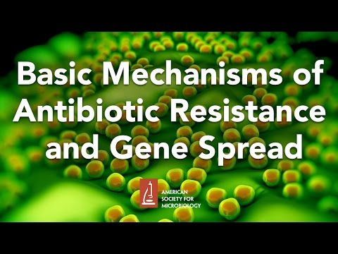Basic Mechanisms of Antibiotic Resistance and Gene Spread by Marilyn Roberts, PhD