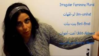 All you wanted to know about The Arabic Plurals