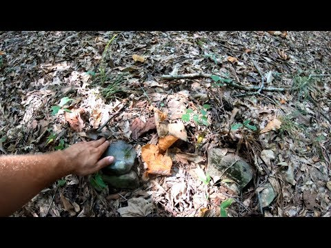 Huge Slave Cemetery Found