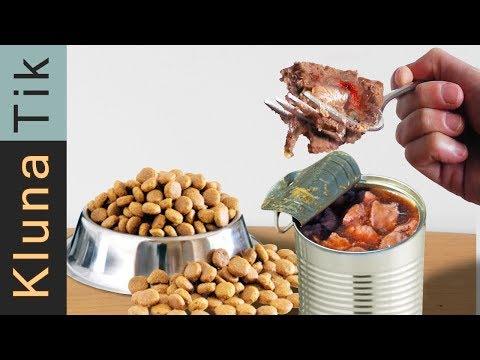 EATING ANIMAL FOOD!! | KLUNATIK COMPILATION ASMR eating sounds no talk