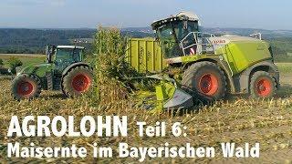 Lohnunternehmen Agrolohn: Maisernte im Bayerischen Wald