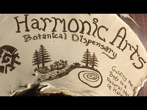 Artists Conk | Medicinal Mushroom Mysteries | Harmonic Arts