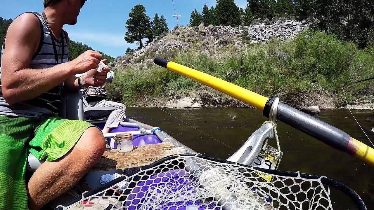 Fly fishing the big hole river montana youtube for Big hole river fly fishing