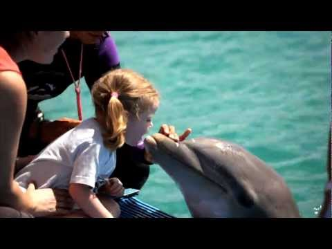 Curacao,  a unique Caribbean island paradise
