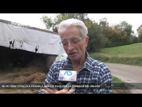 16/10/2019 | STALLA A PRANOLZ, NON C'E' PACE PER L...