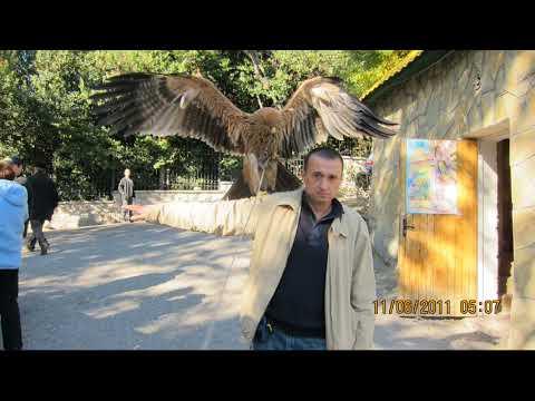 Mykola Petichenko: Крым 2011