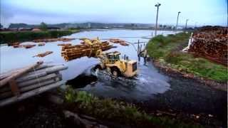 Product Line Caterpillar Forestry Machines - Providing Solutions from Stump to Mill
