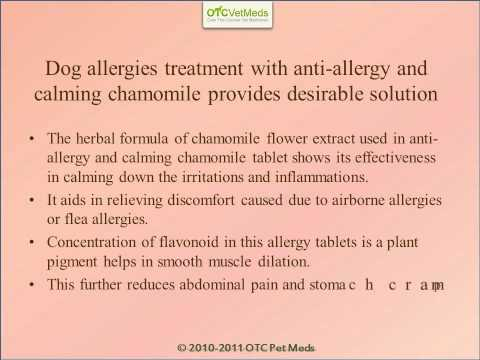 Anti-allergy and calming chamomile tablets for pets.wmv