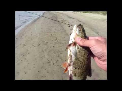зимняя рыбалка в сибири - 2016-08-09 17:54:45