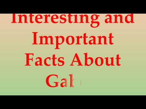 Interesting and Important Facts About Gabon