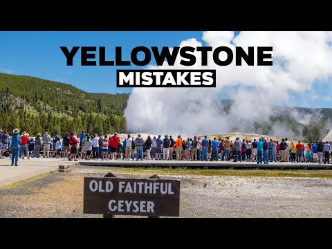 Yellowstone National Park Mistakes! Don't Do This On Your Vacation