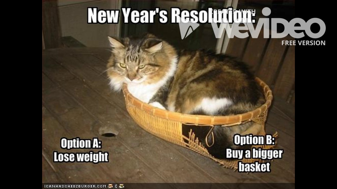 New Funny Memes: Funny New Year Memes 2017 1