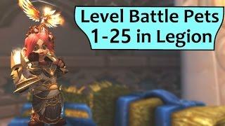 Level Battle Pets 1-25 in Legion Without Battling