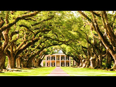 New Orleans – Oak Alley and Laura Plantation Tour