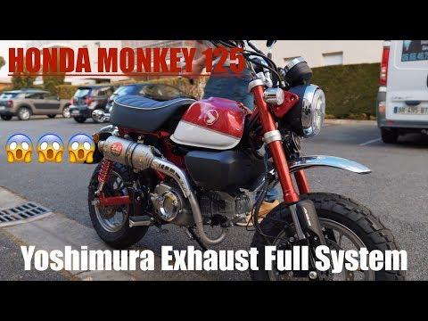 Honda Monkey 125 Yoshimura Exhaust Comparison Vs Stock Exhaust Youtube
