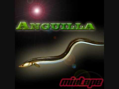 ANGUILLA GANG-112 Prod.canna